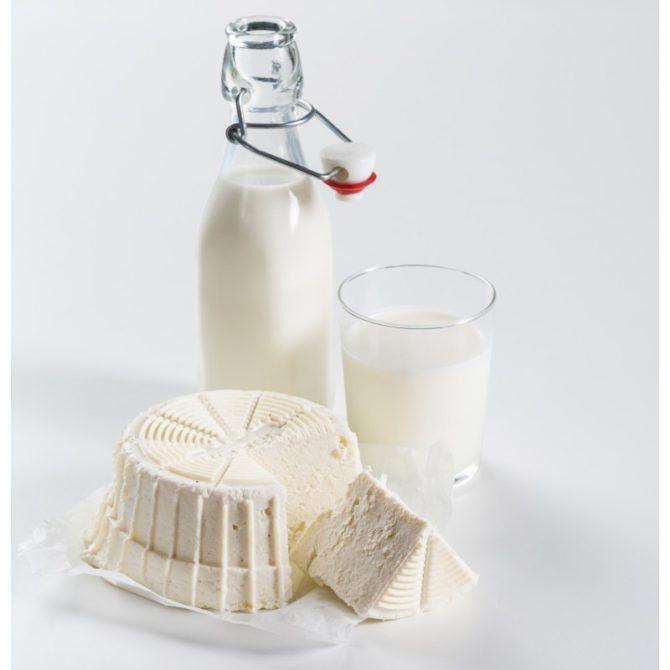 cheesemaker-maszynka-do-robienia-sera